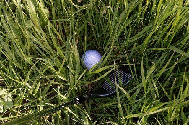 골프 용어 정리 - 러프