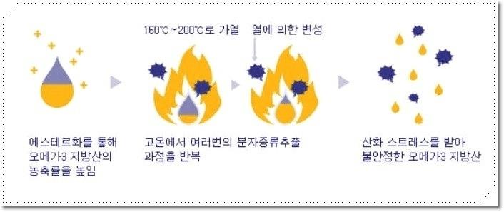 오메가3 추천